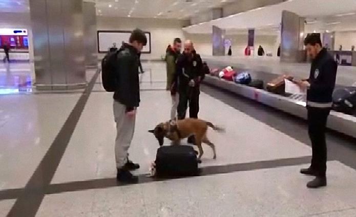 hollanda-daki-kopekli-aramaya-ataturk-havalimani